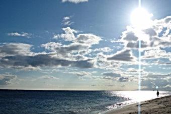 Адама: Сакральная Вода вашего Тела и Лемурийское Сердцебиение Тихого Океана